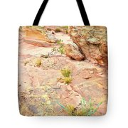 Splash Of Color In Valley Of Fire's Wash 3 Tote Bag