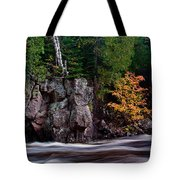 Splash Of Fall Color Tote Bag