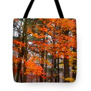 Splashes Of Autumn Tote Bag