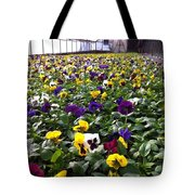 Splashes Of Color Tote Bag