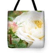 Splended Roses Tote Bag