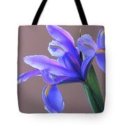 Splendid Iris Tote Bag
