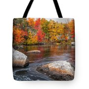 Splendor Of Fall Tote Bag