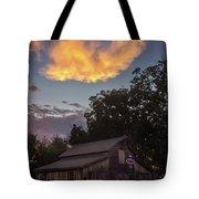 Splendorous  Tote Bag by Viviana Nadowski