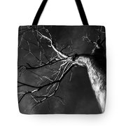 Split Black And White Tote Bag