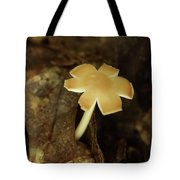 Split Capped Mushroom Tote Bag