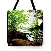 Split Rock State Park Tote Bag