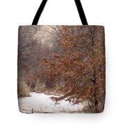Splitrail Winter Tote Bag