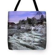 Spokane Pavilion Winter Tote Bag