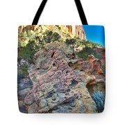 Sponge Boulder Tote Bag