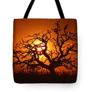 Spooky Tree Tote Bag by Stephen Anderson