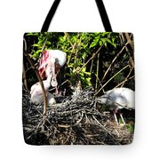 Spoonbill Family Tote Bag