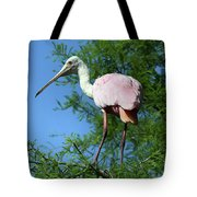 Spoonbill In A Tree Tote Bag