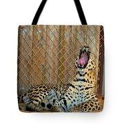 Spot Tote Bag