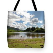 Spot The Swimming Dog In Derwnt Water Lake Tote Bag