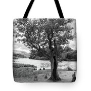 Spot The Woman And Her Dog- Behind The Tree Tote Bag