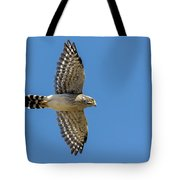 Spot-winged Falconet  In Flight Tote Bag