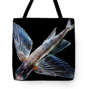 Spotfin Flyingfish Tote Bag
