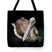 Spotlight On A Pink-backed Pelican Tote Bag