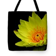 Spotlight On Lily Tote Bag