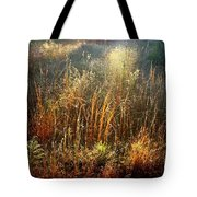 Spotlight On The Marsh Tote Bag