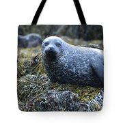 Spotted Coat Of A Harbor Seal Tote Bag