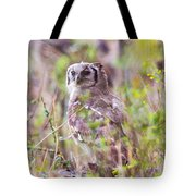 Spotted Eagle Owl  Tote Bag