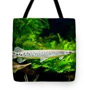 Spotted Gar Aquarium Fishes Pair Tote Bag
