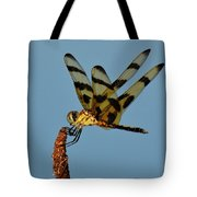 Spotted Hunter Tote Bag