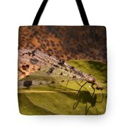 Spotted Mayfly Tote Bag