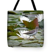 Spotted Sandpiper And Lilies Tote Bag