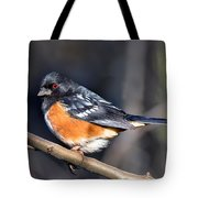 Spotted Towhee Portrait Tote Bag