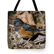 Spotted Towhee Tote Bag