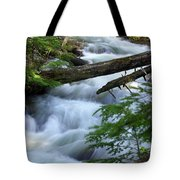 Sprague Creek Glacier National Park Tote Bag