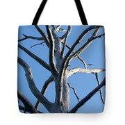 Sprawling Dead Tree Tote Bag
