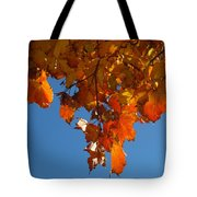 Spray Of Autumn Leaves  Tote Bag