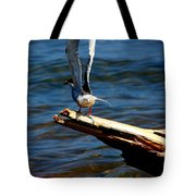 Spread And Tern Tote Bag