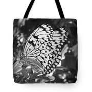 Spread You Wings And Fly Tote Bag