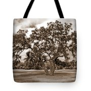 Spreading Tree Tote Bag