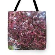 Spring 12 Tote Bag