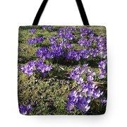 Spring 2 Tote Bag