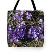 Spring 3 Tote Bag
