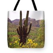 Spring Along Salt River Tote Bag