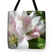 Spring Apple Blossoms Art Prints Apple Tree Baslee Troutman Tote Bag