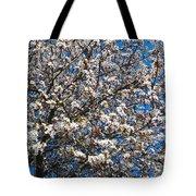Spring As Rhapsody Tote Bag