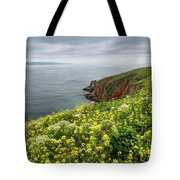 Spring At Chimney Rock Tote Bag