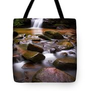 Spring At Table Rock Tote Bag