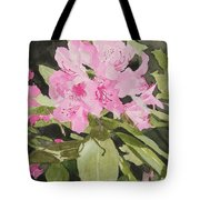Spring At The Cabin Tote Bag