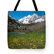 Spring At The Maroon Bells Tote Bag by Cascade Colors