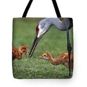 Spring Babies  Tote Bag